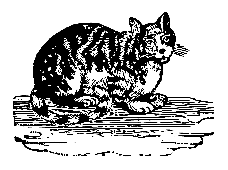 Bowen Mother Goose Cat - Free Clip Art