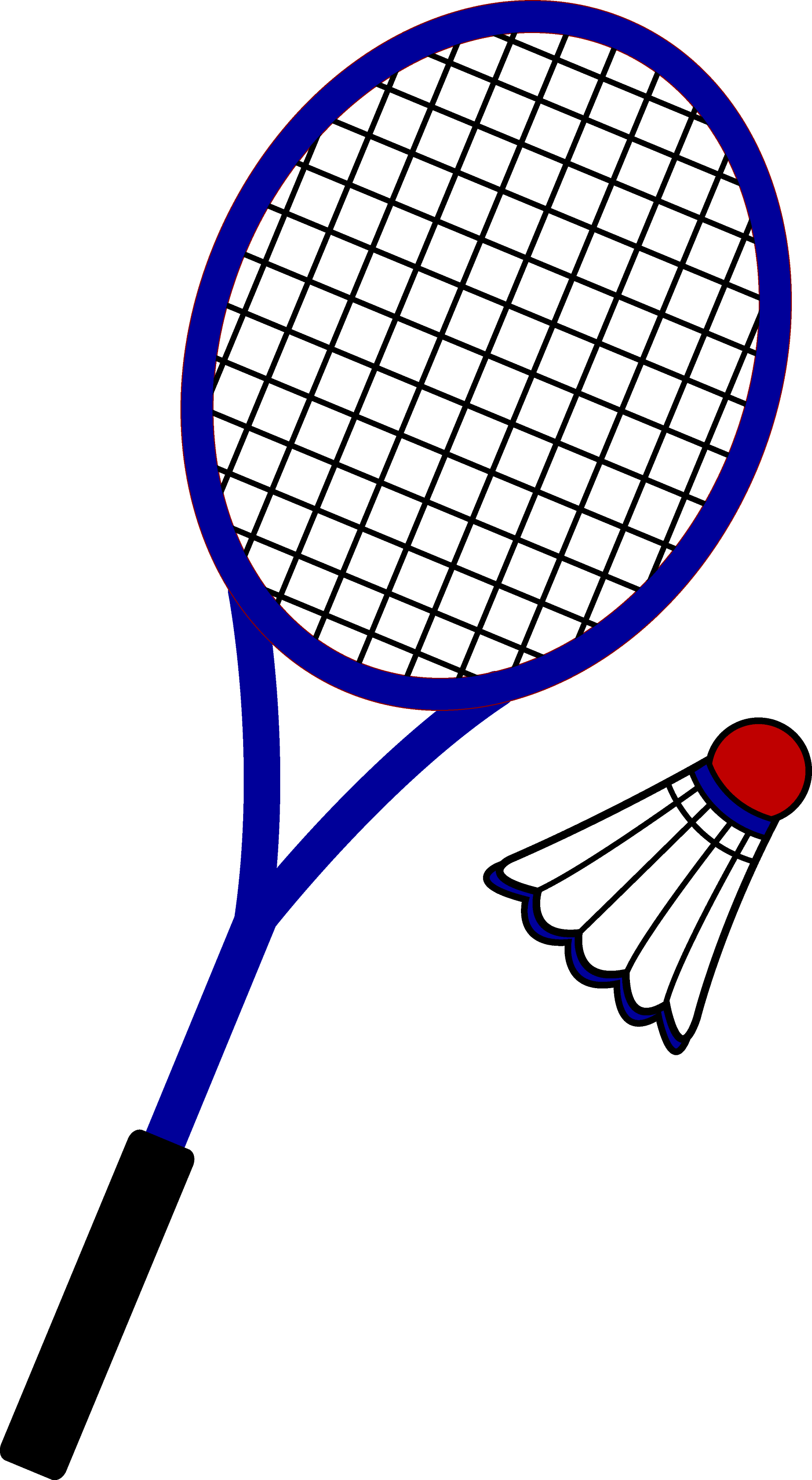 Badminton racket and birdie