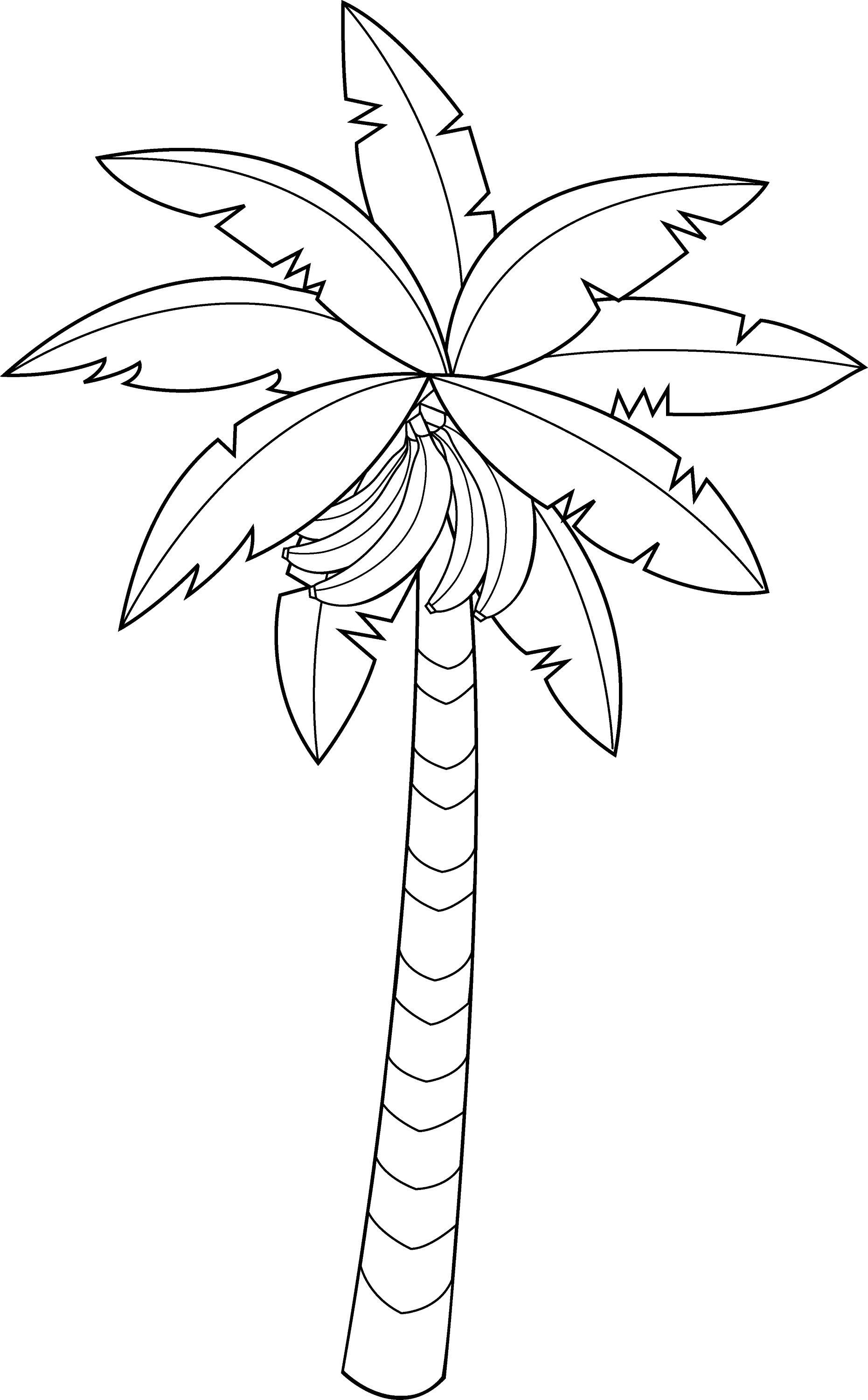 banana tree drawing png - photo #5