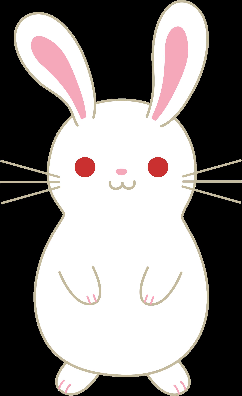 clipart rabbit cartoon - photo #48