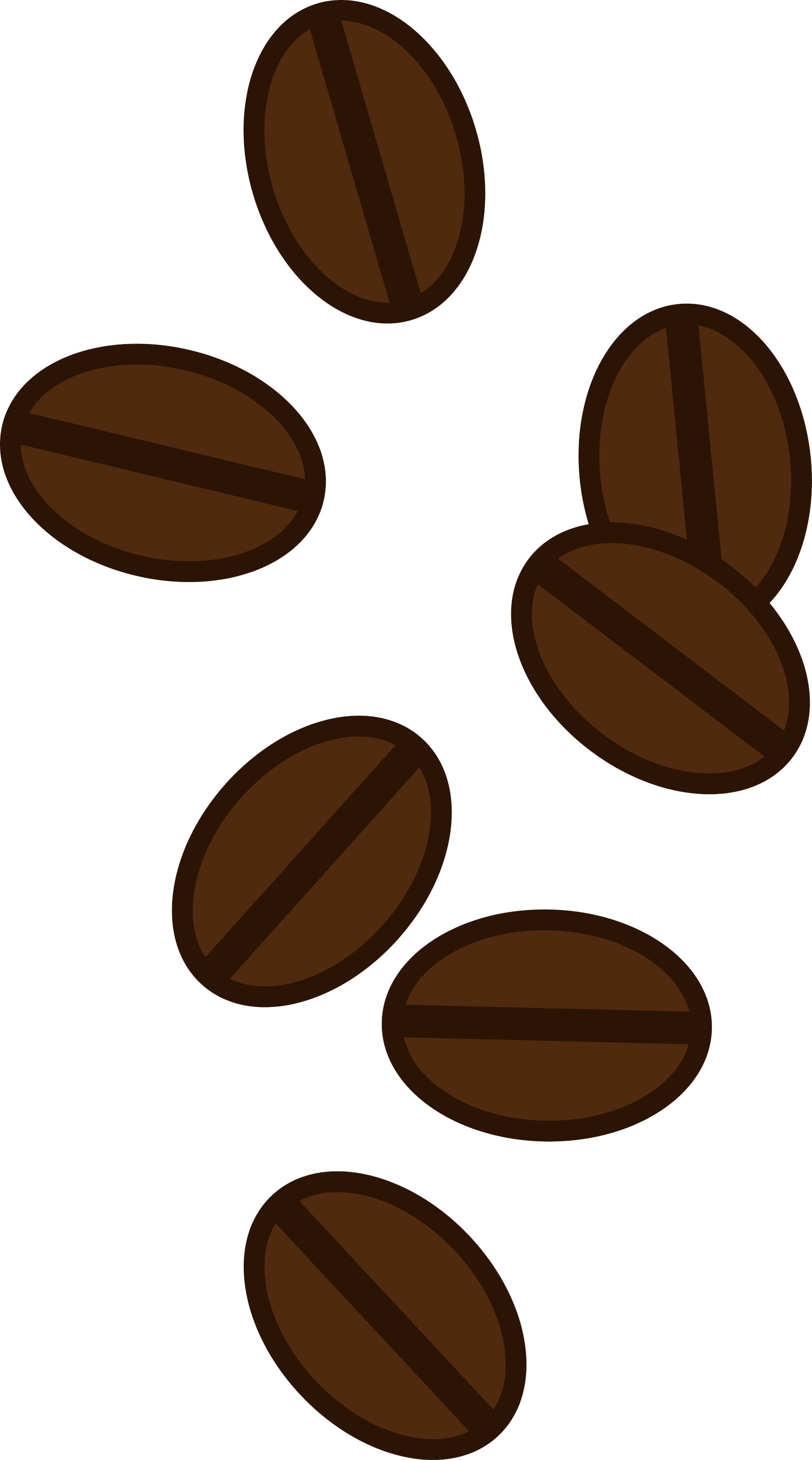 Coffee Bean Drawing Vector Art of Coffee Beans