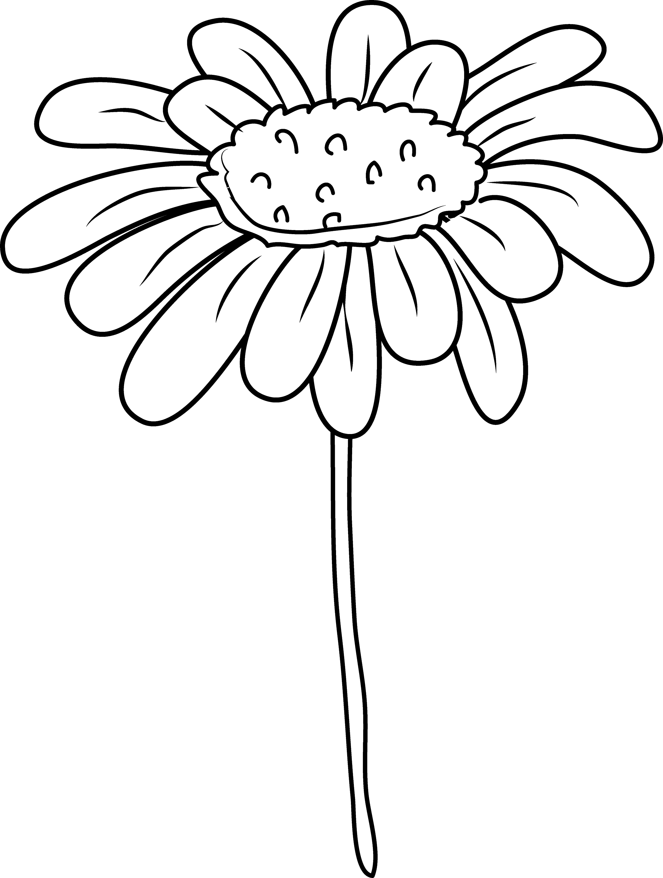daisy flower coloring page free clip art
