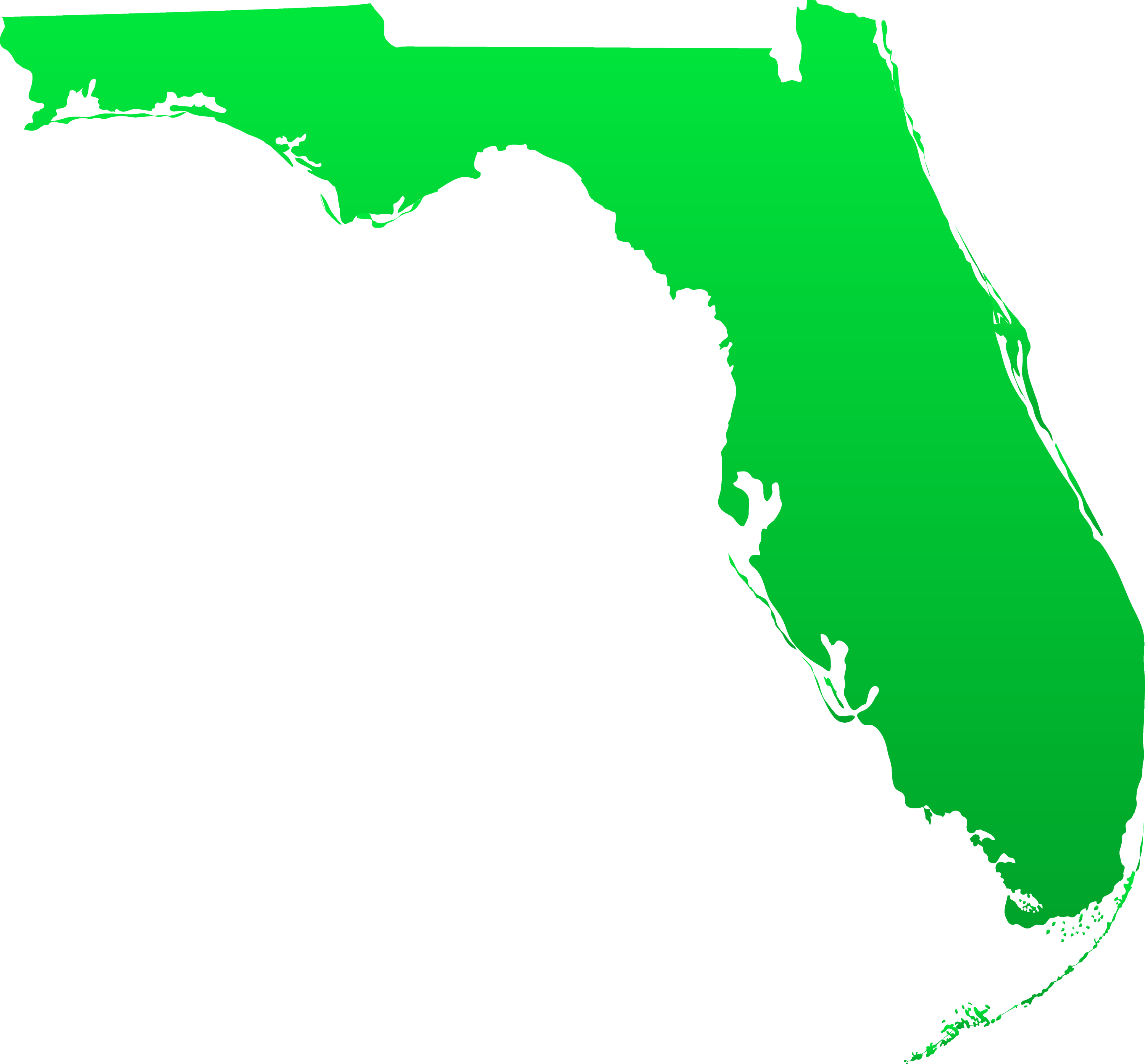state of florida map vector