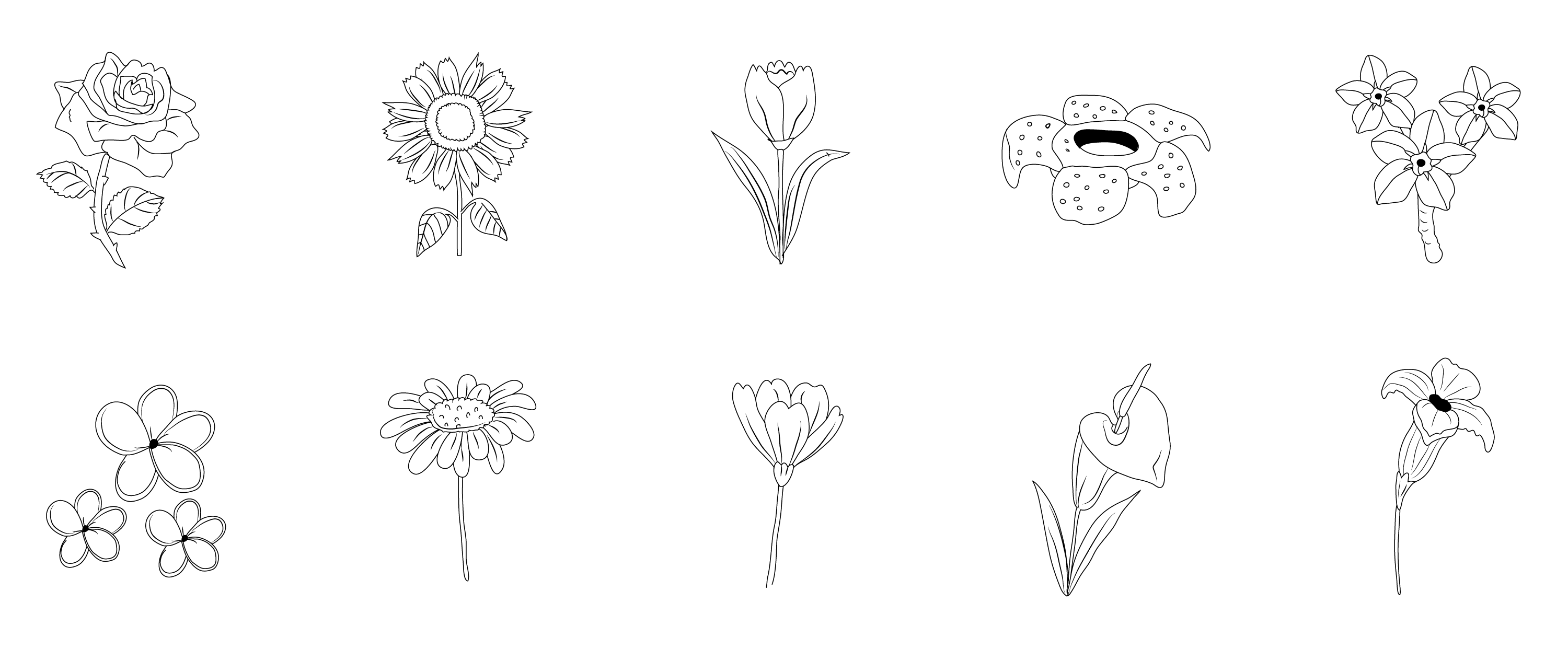 free clipart. line drawings of flowers - photo #33
