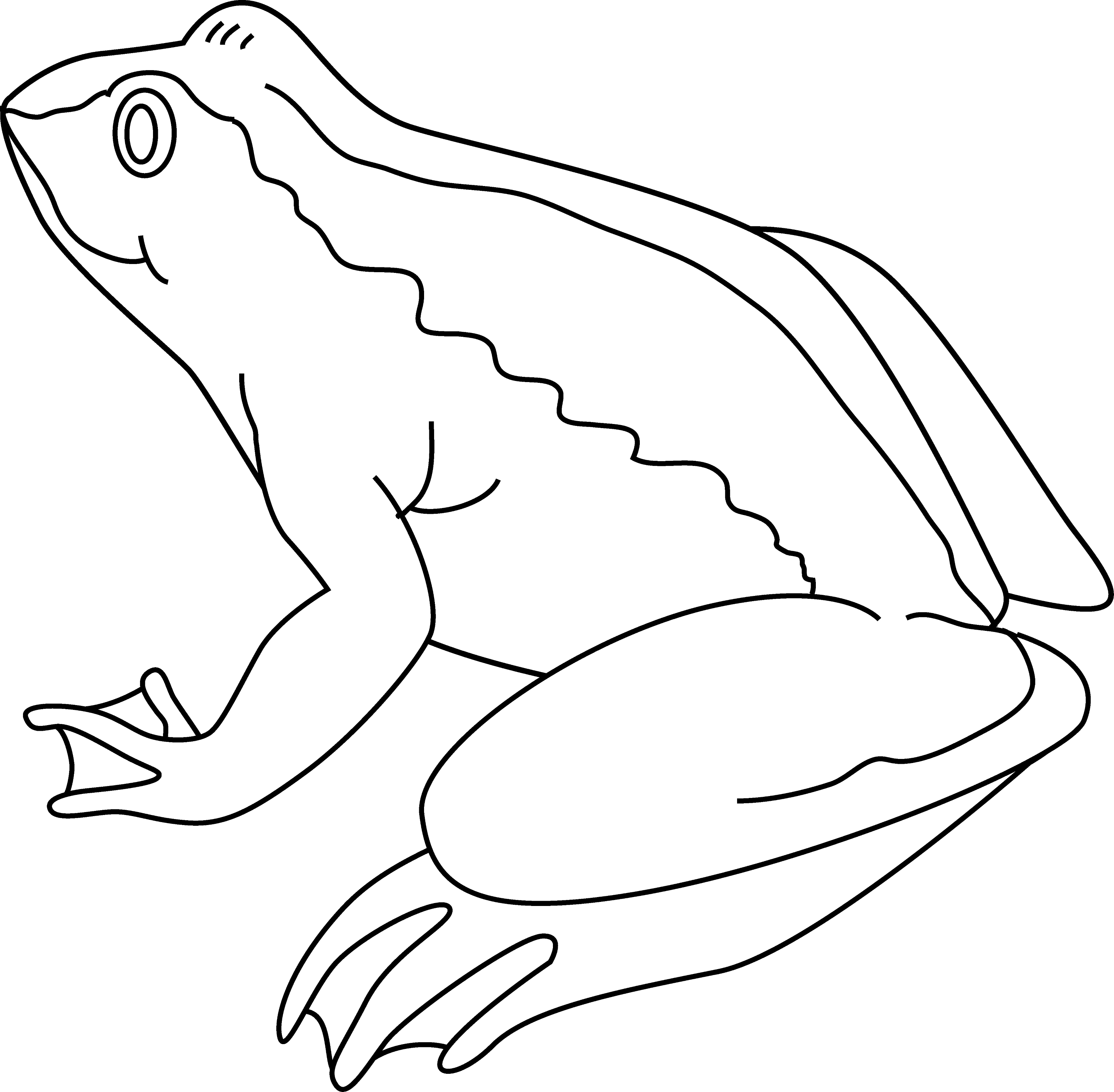 Line Drawing Frog : Frog coloring page free clip art