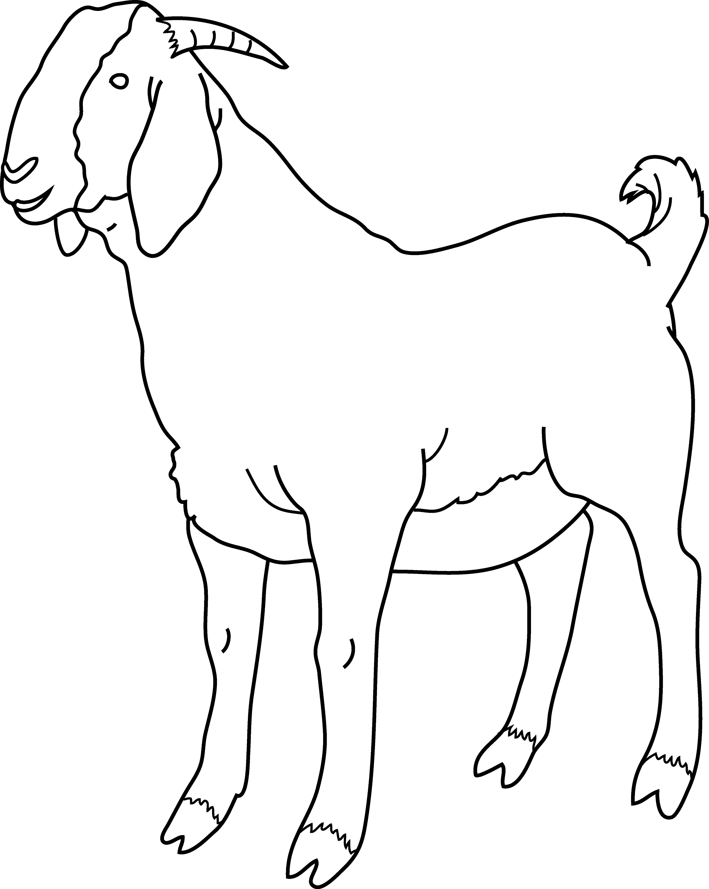 Free Coloring Pages Of Goat