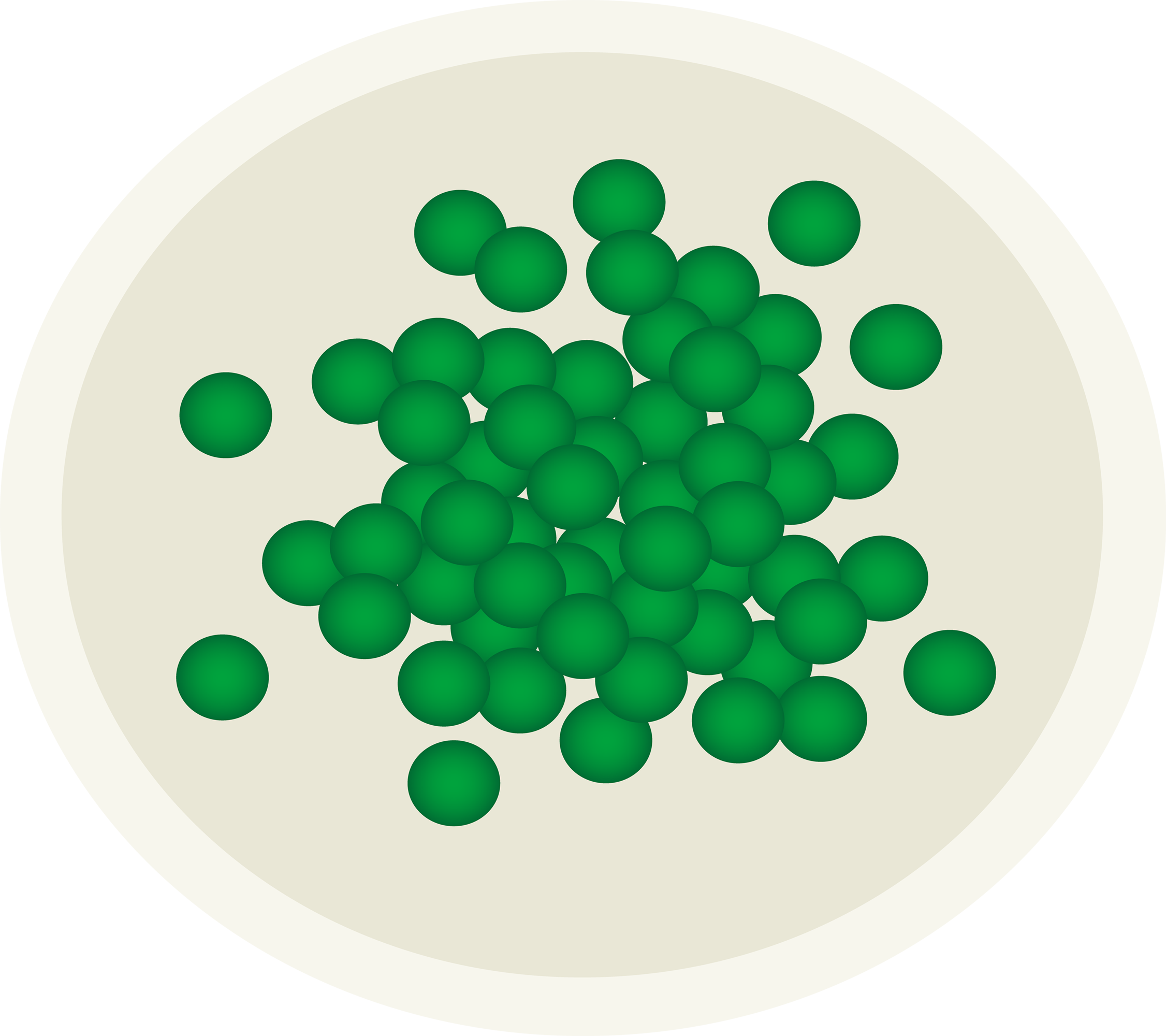 Green Peas on a White Plate - Free Clip Art