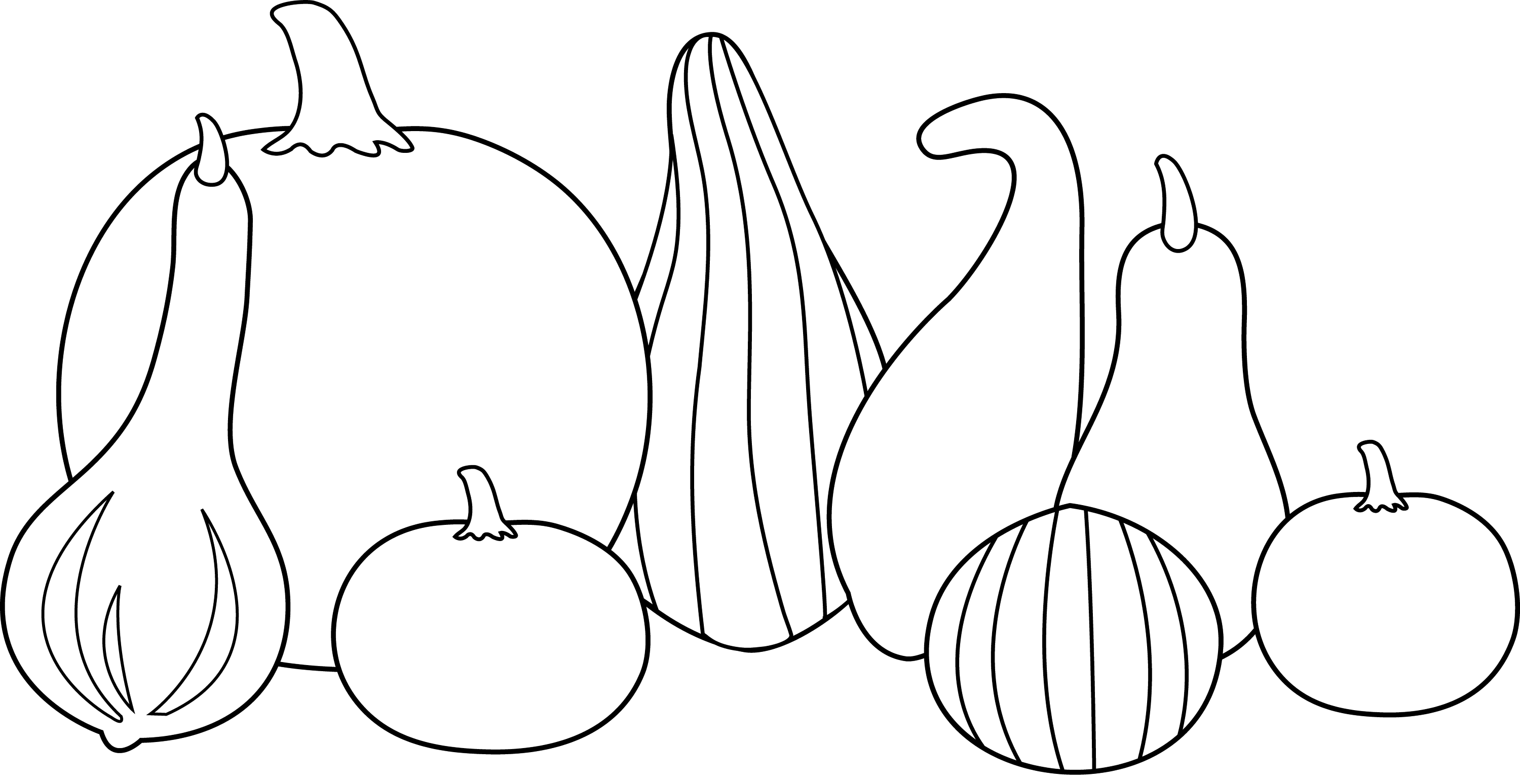 Thanksgiving Gourds Line Art Free Clip Art