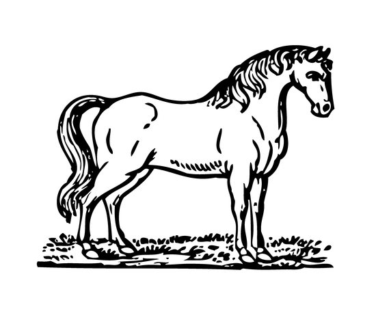 Bowen Mother Goose Horse Illustration