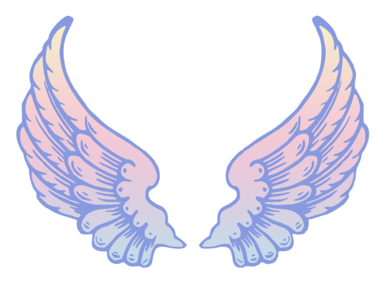 Pastel Pink and Blue Angel Wings