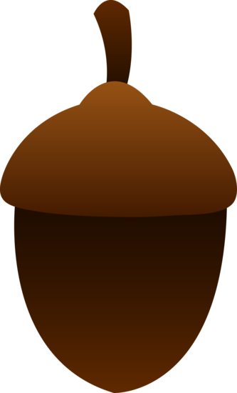 Little Brown Acorn