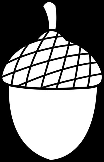 Colorable Acorn Design