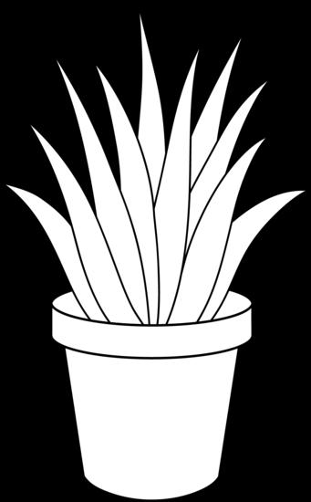 Line Art Plants : Potted plant clip art black and white