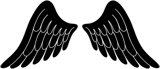 Black Silhouette Angel Wings
