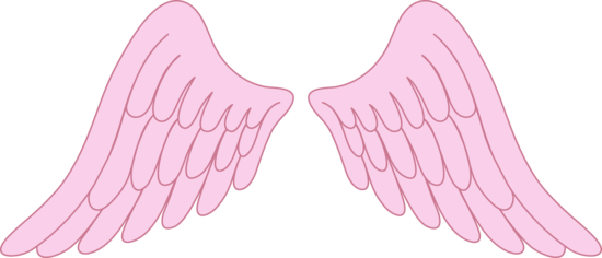 Light Pink Angel Wings