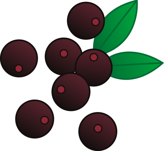 Acai Berry Vector Art