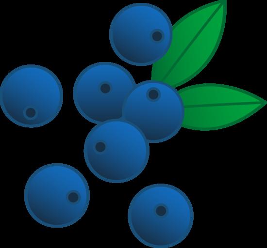 Delicious Blue Berries
