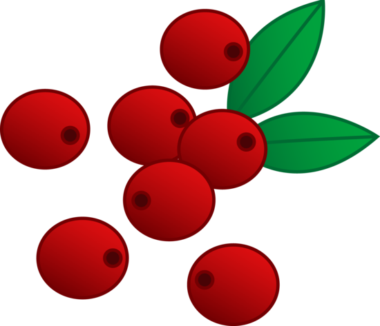 Cranberry Vector Clip Art