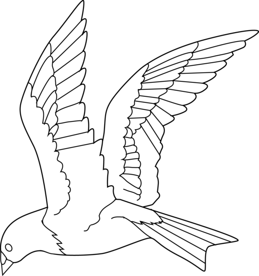 Flying Bird Coloring Page Free Clip Art