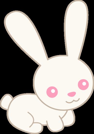 Cute White Albino Bunny
