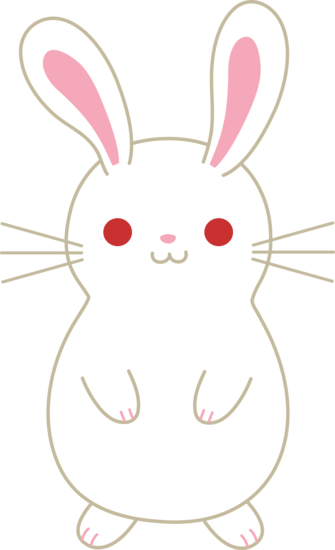 Cute White Pet Bunny