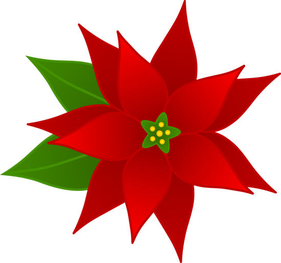 Christmas Poinsettia Flower - Free Clip Art