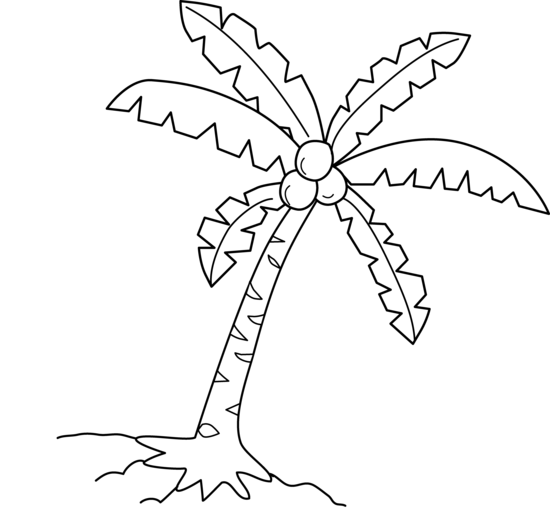 Coconut Tree Coloring Page - Free Clip Art