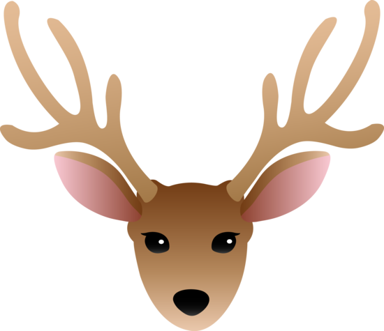 Male Deer Buck