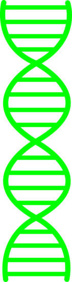 Green DNA Design