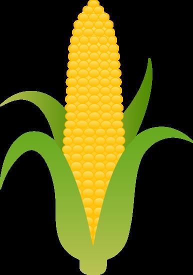 Yellow Harvest Corn Vector