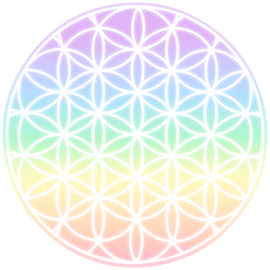 Rainbow Flower of Life Symbol