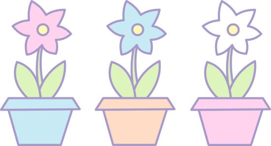 Three Cute Flower Pots