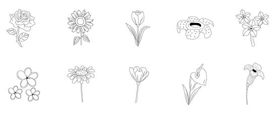 Set of Ten Flowers Line Art