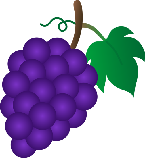Http Funny Pictures Picphotos Net Grapes Clip Art Images