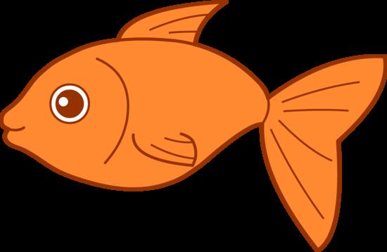 Happy Goldfish Design
