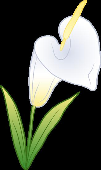 Calla Lily Clip Art Pretty white calla lily