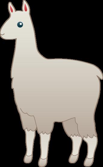 Cute White Llama