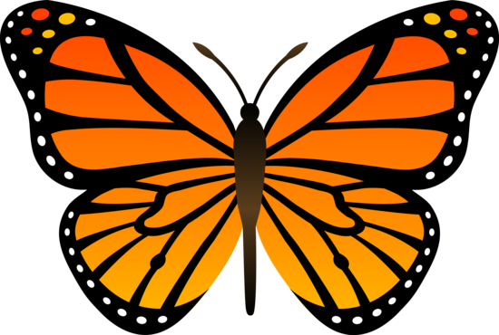 Orange Monarch Butterfly Design