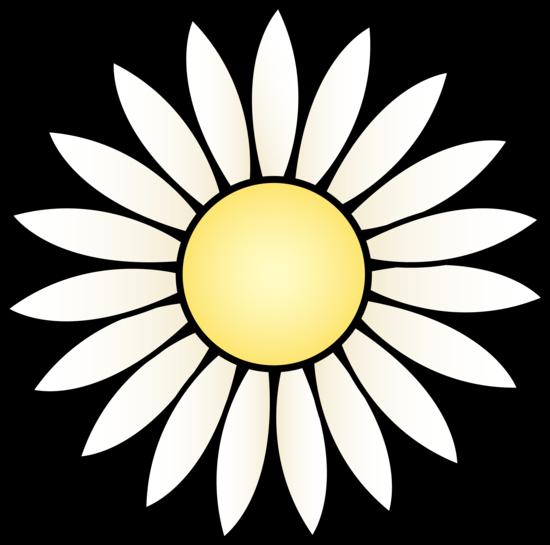 Simple Daisy Flower