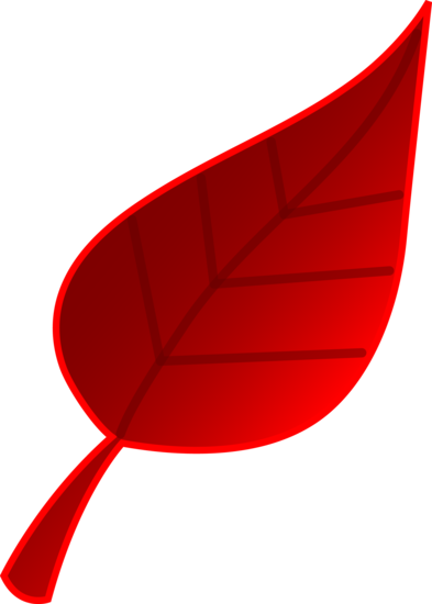Fallen Red Tree Leaf