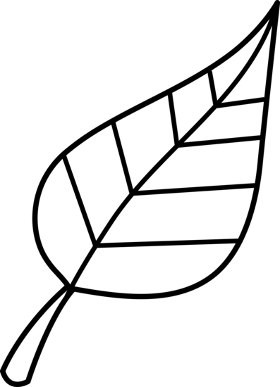 Black and White Leaf Lineart