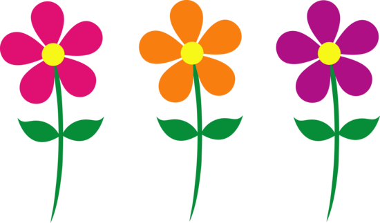 Set of Three Colorful Daisies