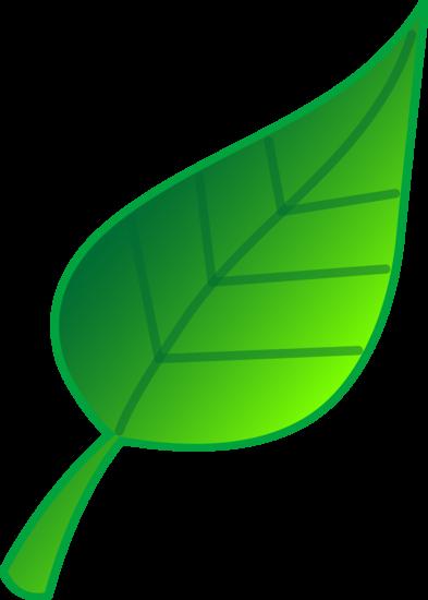 Simple Green Leaf Design