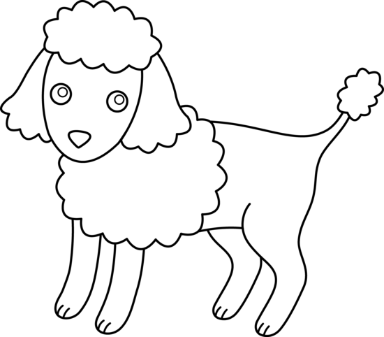 Cute Poodle Coloring Page