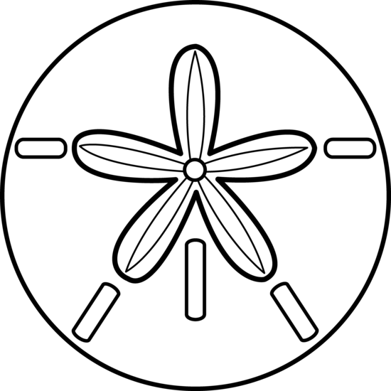 Sand Dollar Design Outline