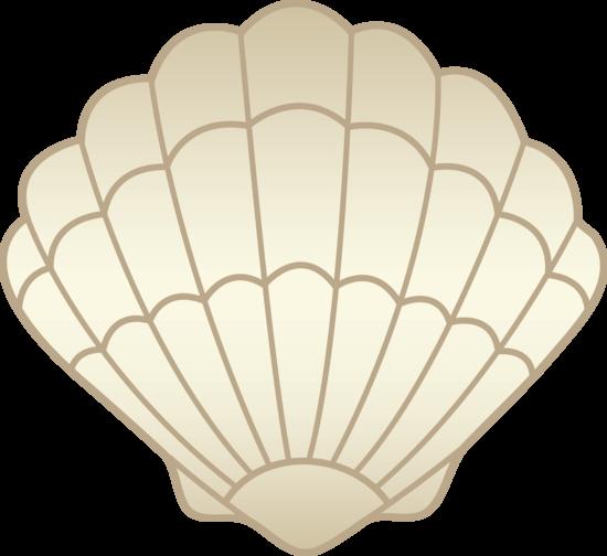 Beige Sea Shell