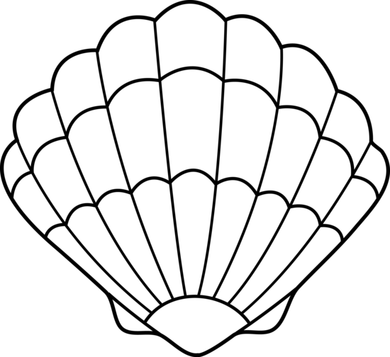 Colorable Sea Shell