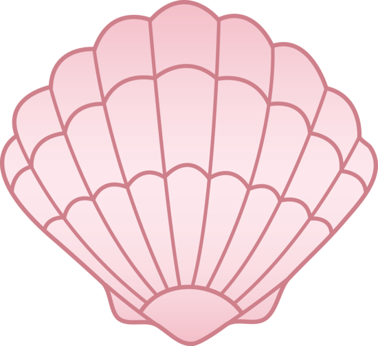 Pink Sea Shell