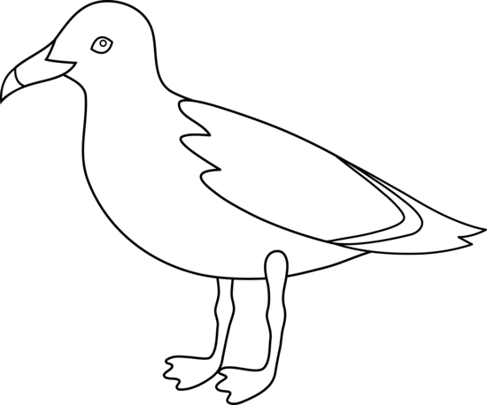 Seagull Outline
