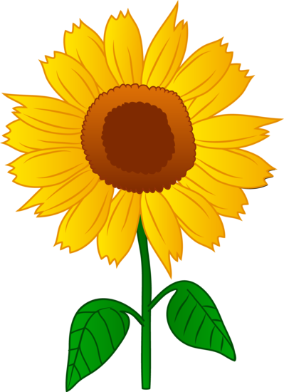 Clip art design by White Lions  colored by Liz A Sunflower Images Clip Art
